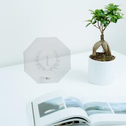Placa de vidre octogonal