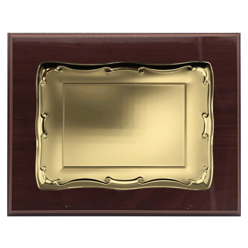 Placa de reconocimiento (33x22)