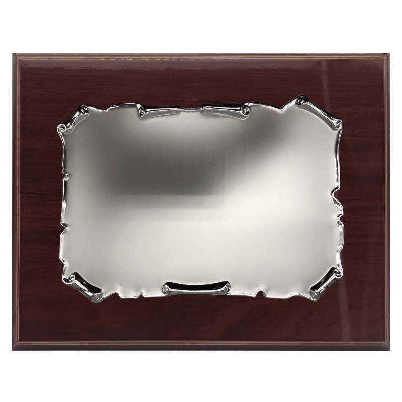 Placa de reconeixement (24X29)